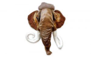 Mammoet Dierenkop Wild & Soft 'Arthur'
