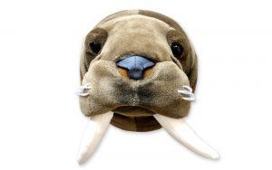 Dierenkop Walrus Jacob